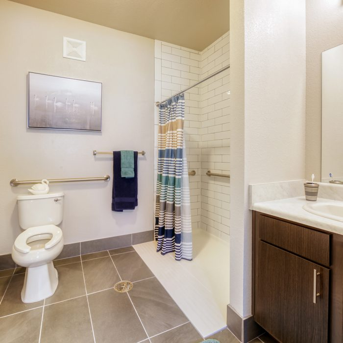 Personal bathroom with walk in shower and toilet for seniors