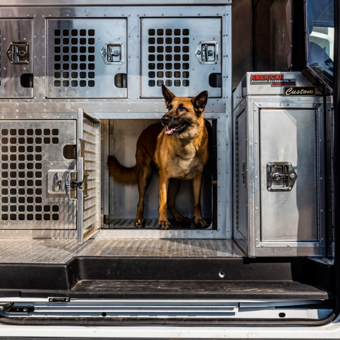 Dog in kennel for K9s For Warriors Project by Summit Contracting Group